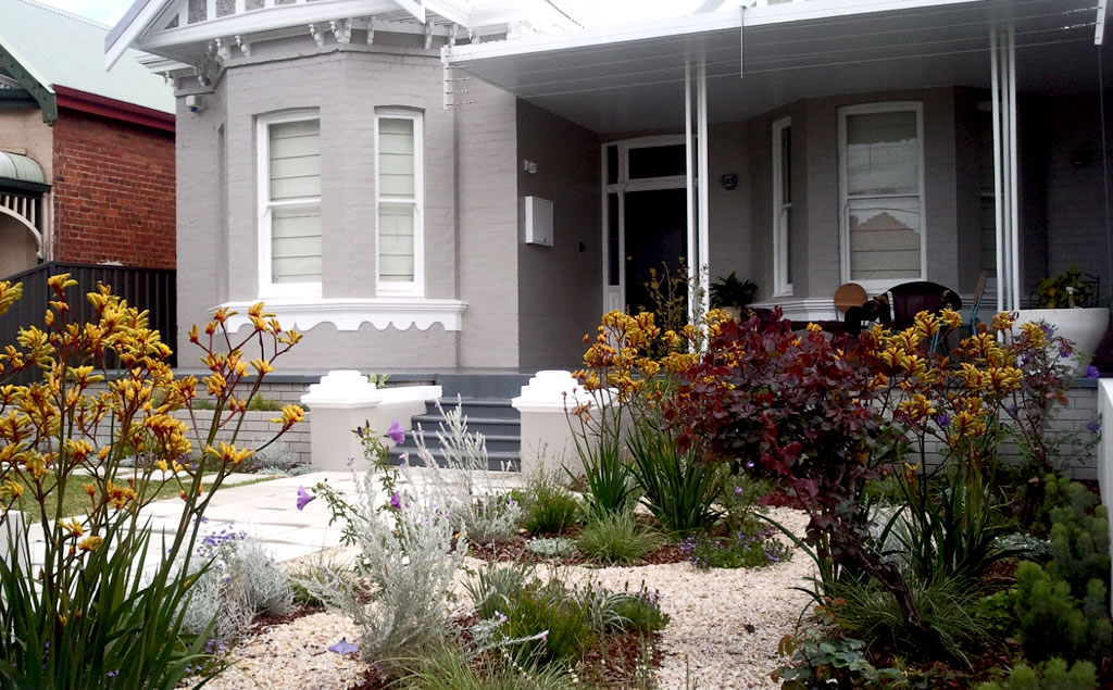 Landscaping with native plants in Perth