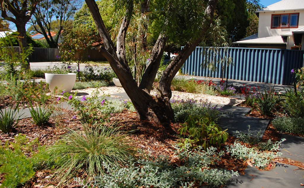 Garden Design & Planting Perth (Softscapes) Revive Landscaping